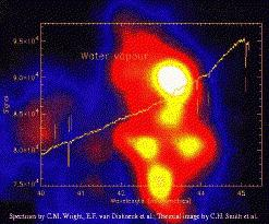 ISO-SWS detection of water vapor absorption lines toward Orion IRc2